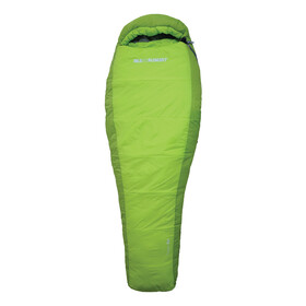 Sea to Summit Voyager Vy4 Sleeping Bag Long lime
